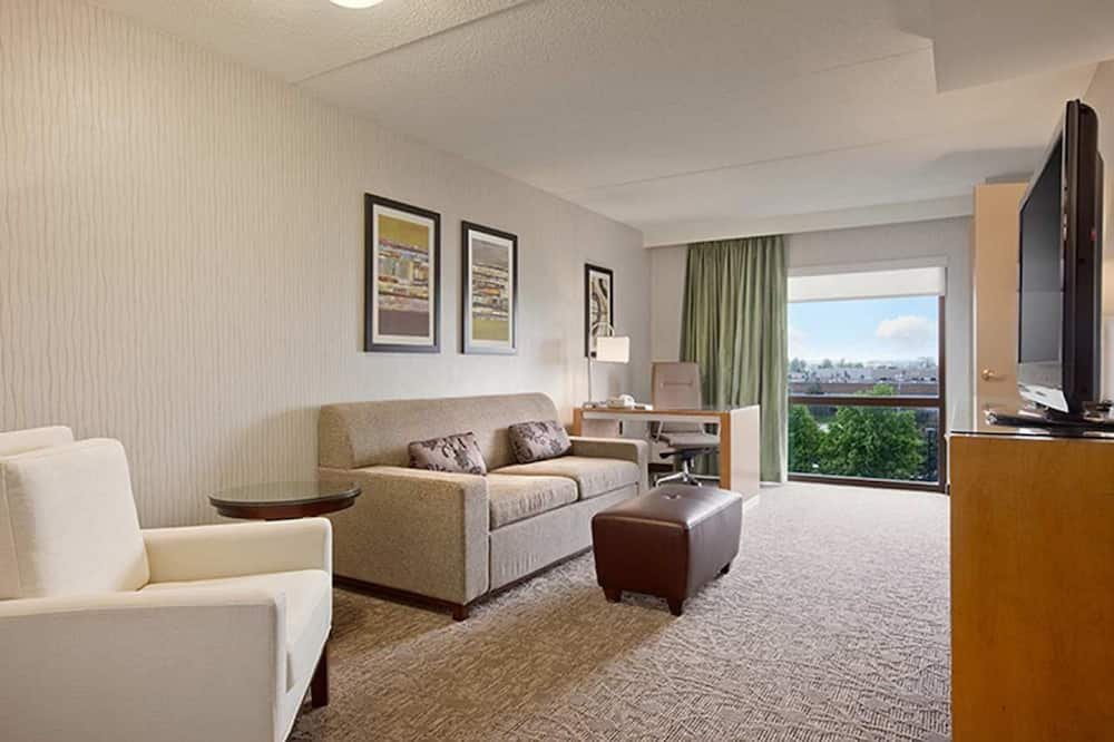 Basic Suite - Living Area
