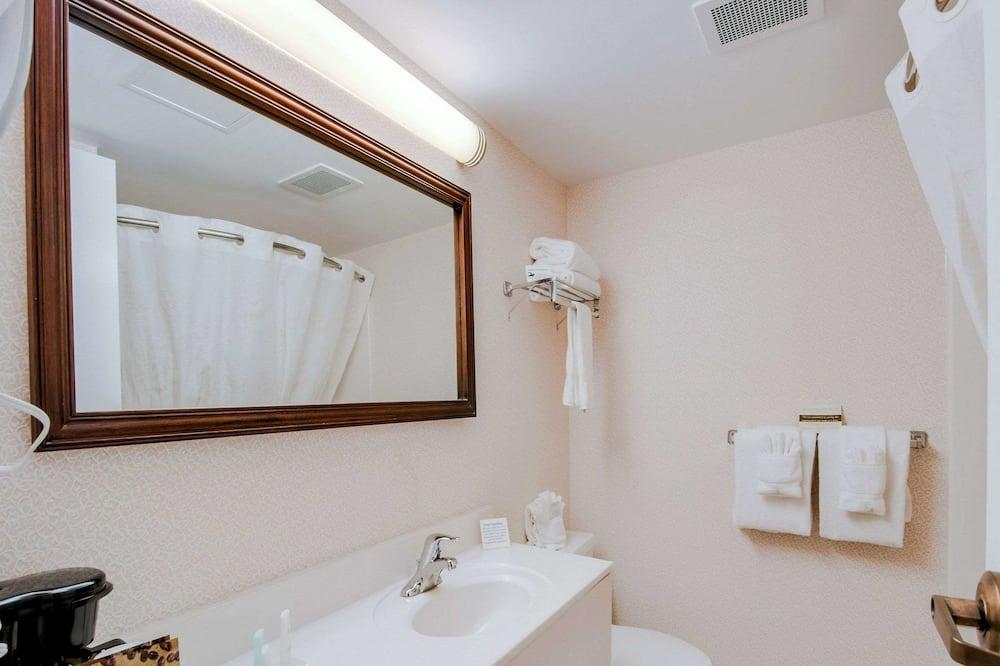 Standard Oda, 2 Çift Kişilik Yatak, Sigara İçilebilir - Banyo
