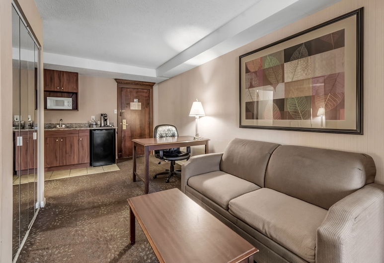 Buffalo Airport Hotel, Buffalo, Studio Suite, 1 King Bed, Living Area