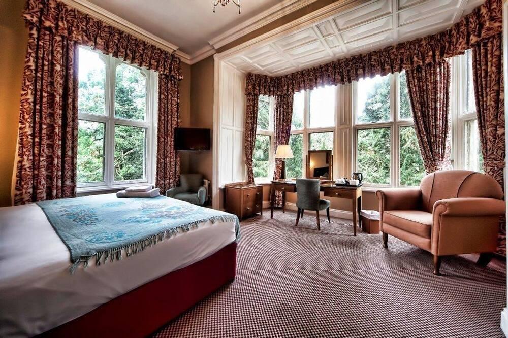 Standard Tek Büyük Yataklı Oda, 1 Büyük (Queen) Boy Yatak - Oturma Alanı