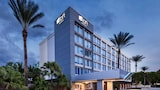 Hotels in Miami,Miami Accommodation,Online Miami Hotel Reservations
