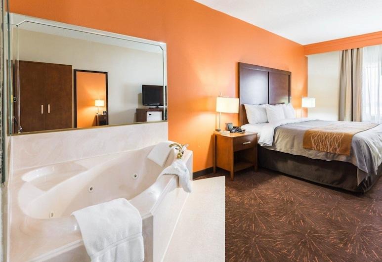 Econo Lodge Inn & Suites East, Хьюстон, Номер
