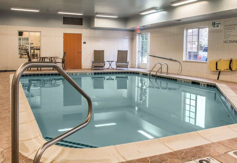 Comfort Inn & Suites, Fenton, Svømmebasseng