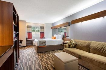 Picture of Microtel Inn & Suites by Wyndham Philadelphia Airport in Philadelphia