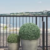 Panoramic Suite - Balcony View