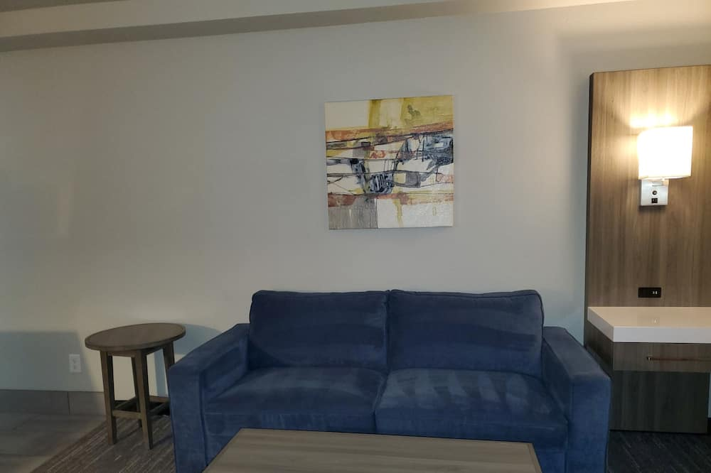 Executive Room, 1 King Bed with Sofa bed, Non Smoking, Refrigerator & Microwave (with Sofabed) - Living Area