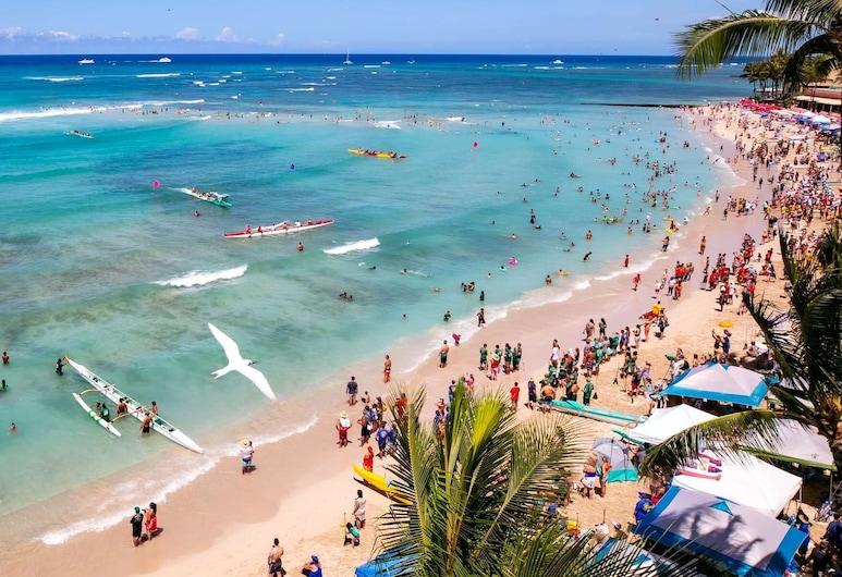 Coconut Waikiki Hotel, Honolulu, Beach