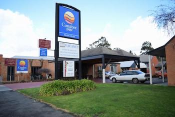 Picture of Comfort Inn Main Lead in Ballarat