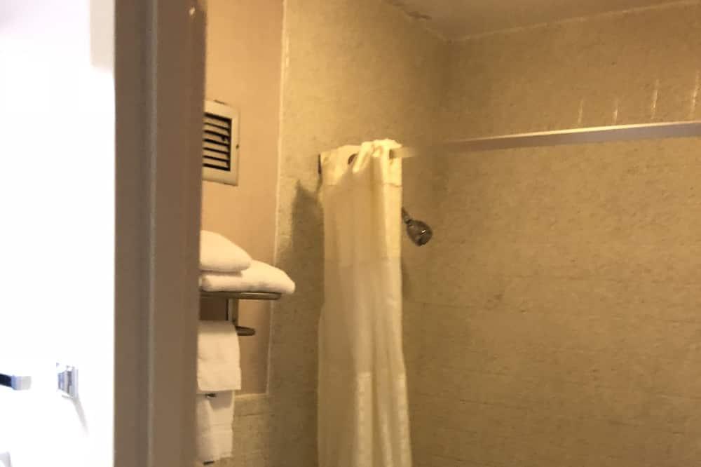 Basic Oda, 1 En Büyük (King) Boy Yatak, Sigara İçilebilir - Banyo