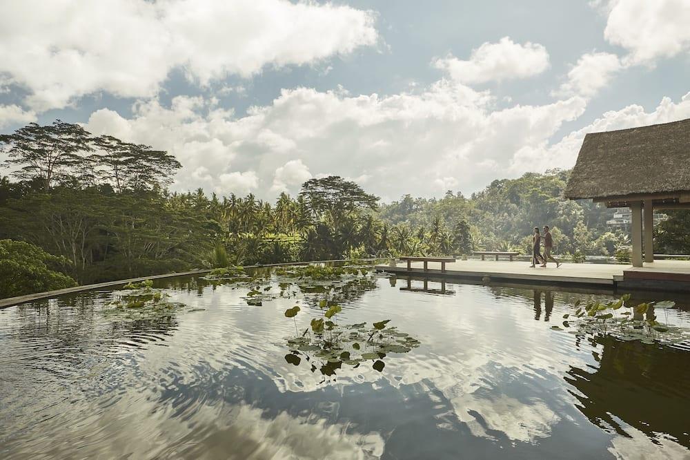 Naturlig pool