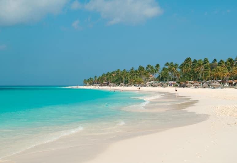 Divi Aruba All Inclusive, Oranjestad