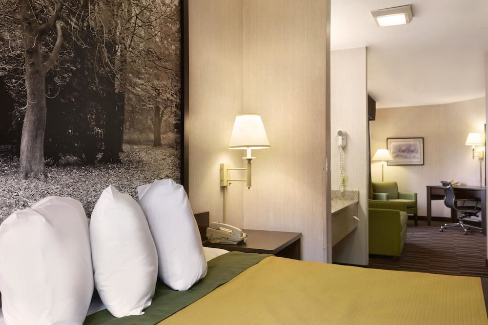 Studio Suite, 1 Queen Bed, Non Smoking - Guest Room View
