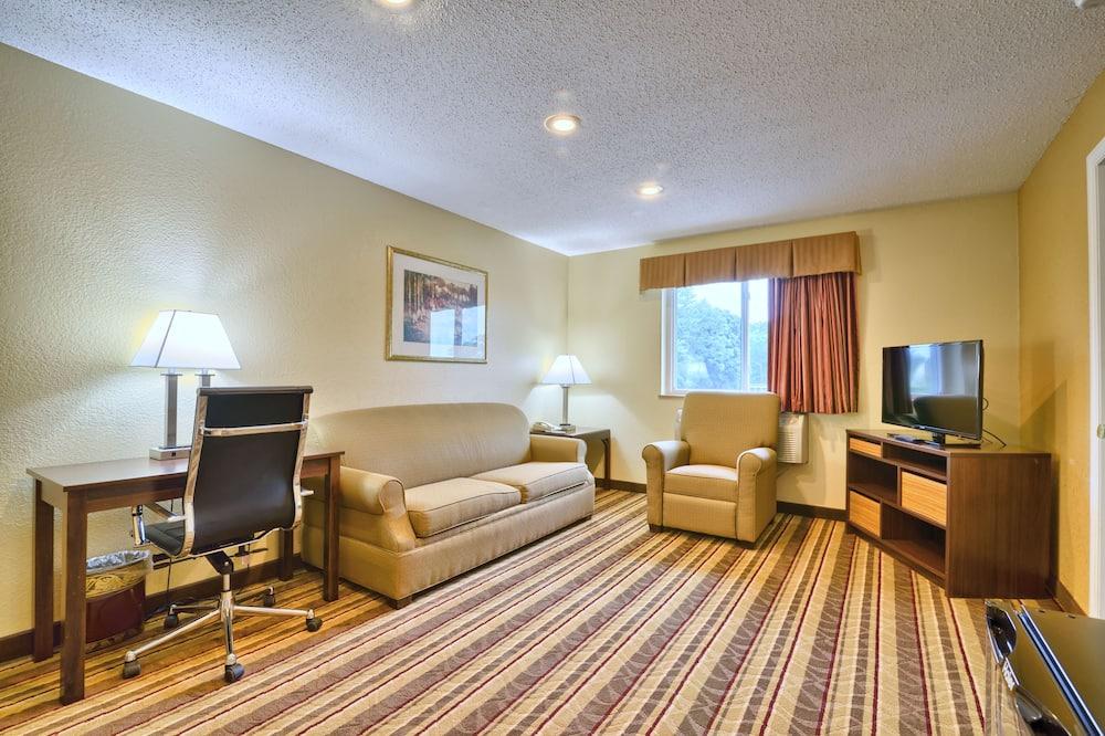 Klassieke suite, 1 kingsize bed met slaapbank, niet-roken, koelkast & magnetron - Woonruimte