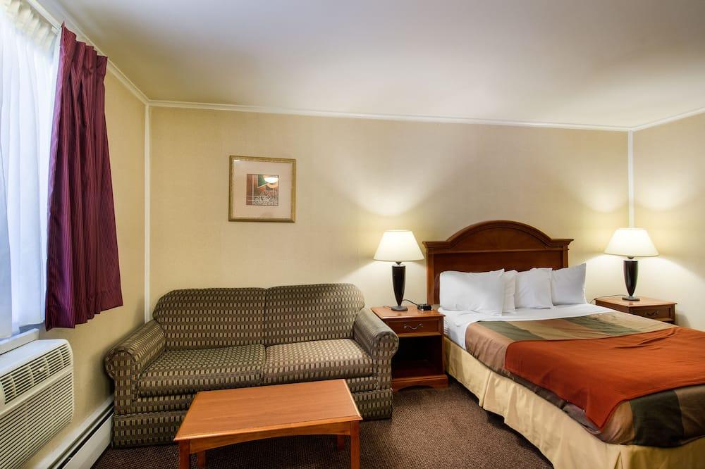 Standard Δωμάτιο, 1 Queen Κρεβάτι, Μη Καπνιστών - Δωμάτιο επισκεπτών