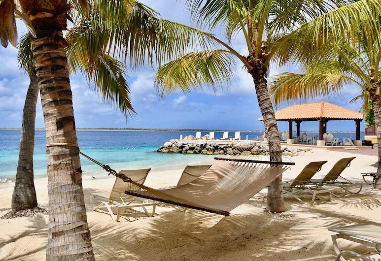 Harbour Village Beach Club Bonaire, Kralendijk, Beach