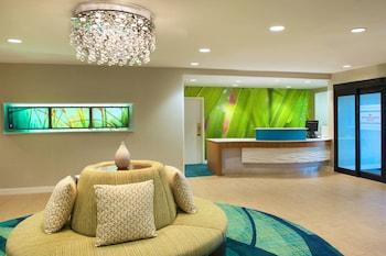 Bild vom SpringHill Suites by Marriott Jacksonville in Jacksonville