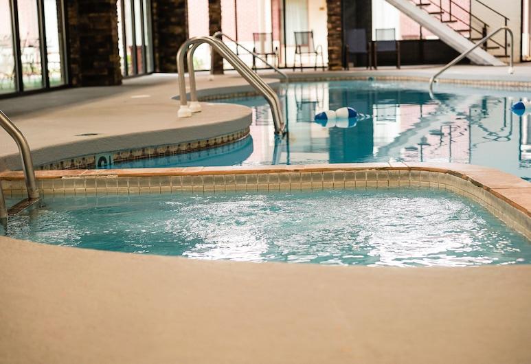 Boarders Inn & Suites by Cobblestone Hotels – Grand Island, Grand Island, Innendørsbasseng