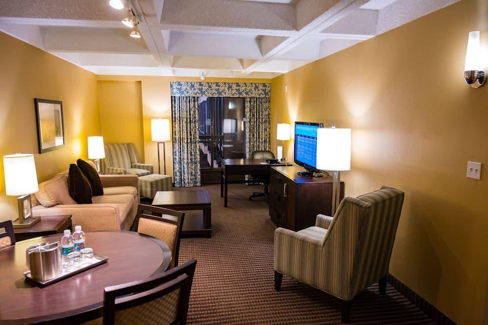 Suite, 1 cama queen-size com sofá-cama, Não-fumadores - Sala de Estar