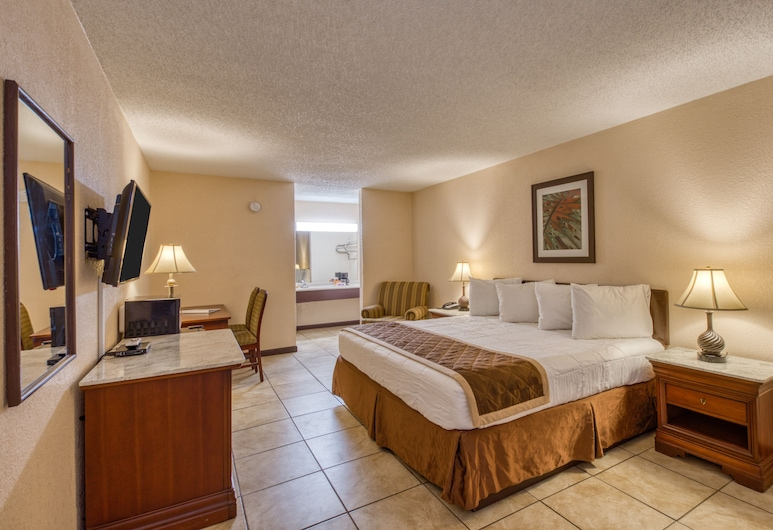 Palms Garden Inn, Lake City, Room, 1 King Bed, Non Smoking, Guest Room