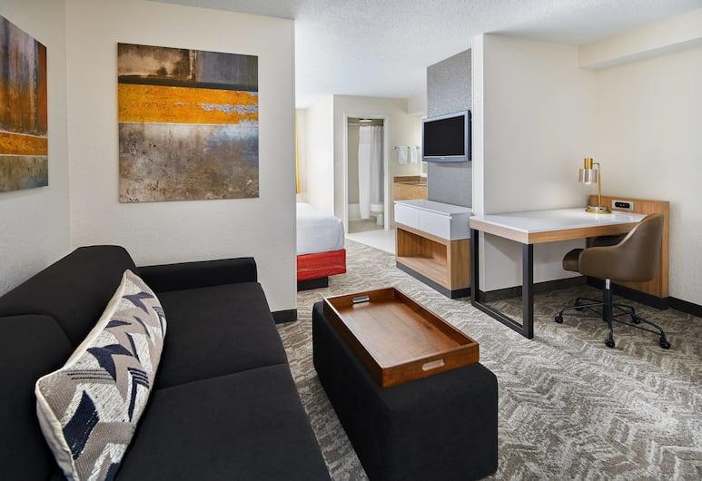 SpringHill Suites Houston Hobby Airport, Houston, Standardværelse - 2 dobbeltsenge, Værelse