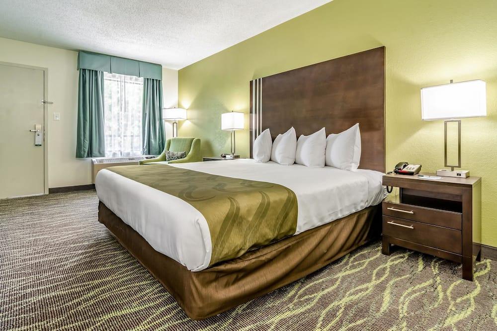 Standard Δωμάτιο, 1 King Κρεβάτι, Καπνιστών - Δωμάτιο επισκεπτών
