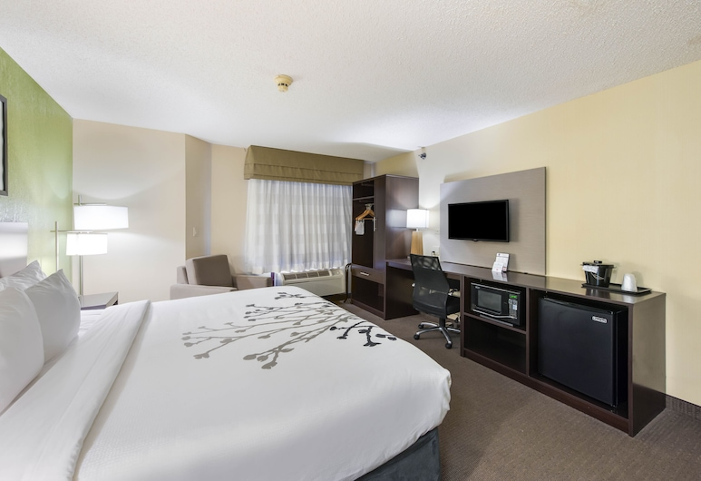 Sleep Inn - Naperville, Naperville, Standardní pokoj, dvojlůžko (200 cm), nekuřácký, Pokoj