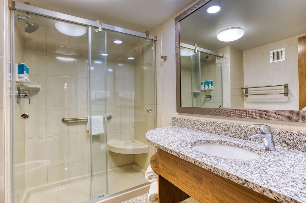 Kamar Deluks, 1 Tempat Tidur King, akses difabel, lemari es & microwave (Roll-in Shower) - Kamar mandi