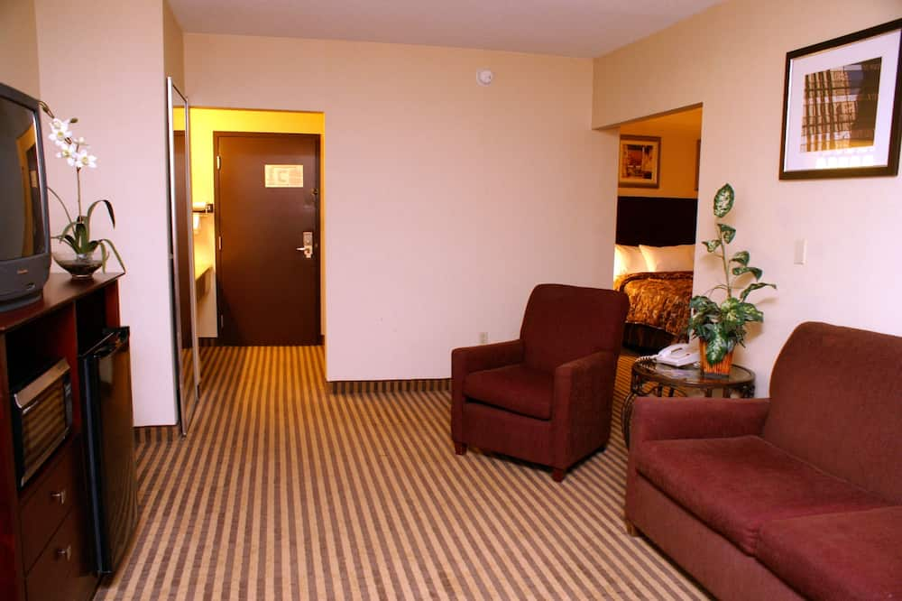 Suite, 1 King Bed, Non Smoking, Jetted Tub - Living Room