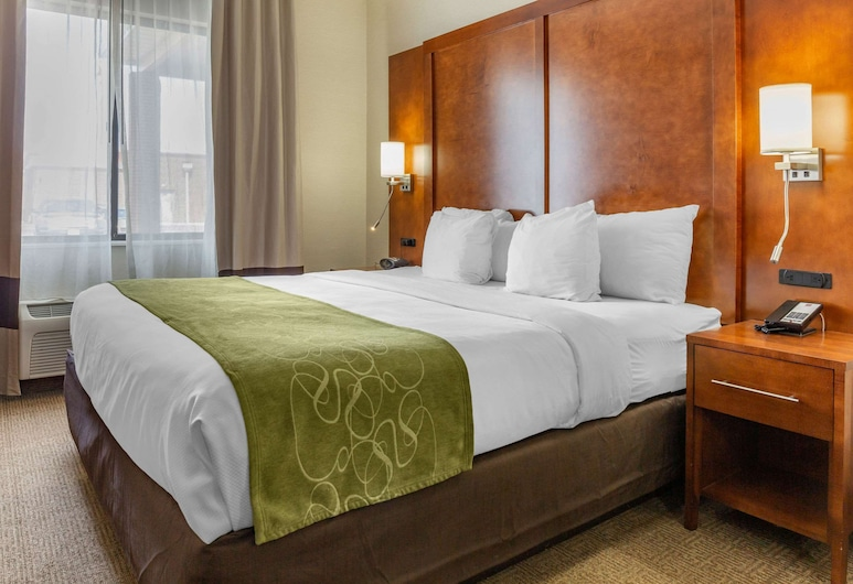 Comfort Suites Dover, Dover, Suite, 1 King Bed, Non Smoking, Guest Room