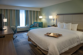 A(z) Hampton Inn & Suites New Orleans-Elmwood/Clearview Pkway, LA hotel fényképe itt: New Orleans