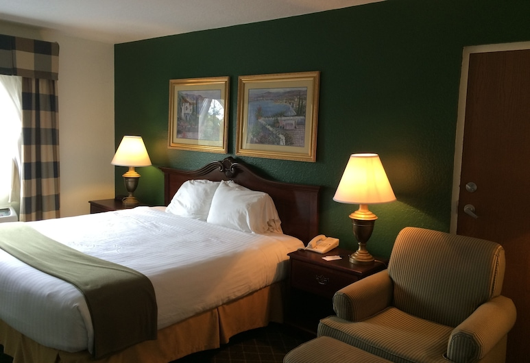 Ruskin Inn Hotel, Ruskin, Basic Room, 1 King Bed, Accessible, Guest Room