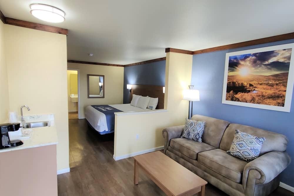 Studio Suite, 1 giường cỡ king, Không hút thuốc - Phòng