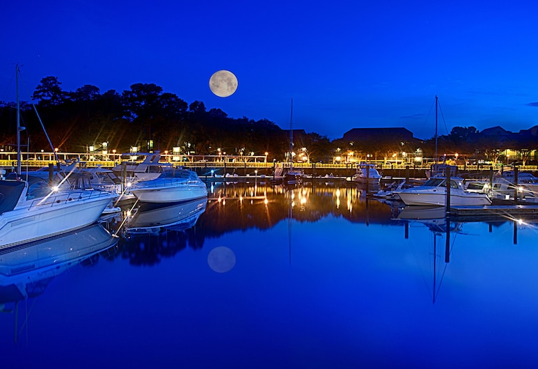 Disney's Hilton Head Island Resort, Hilton Head Island, Dock