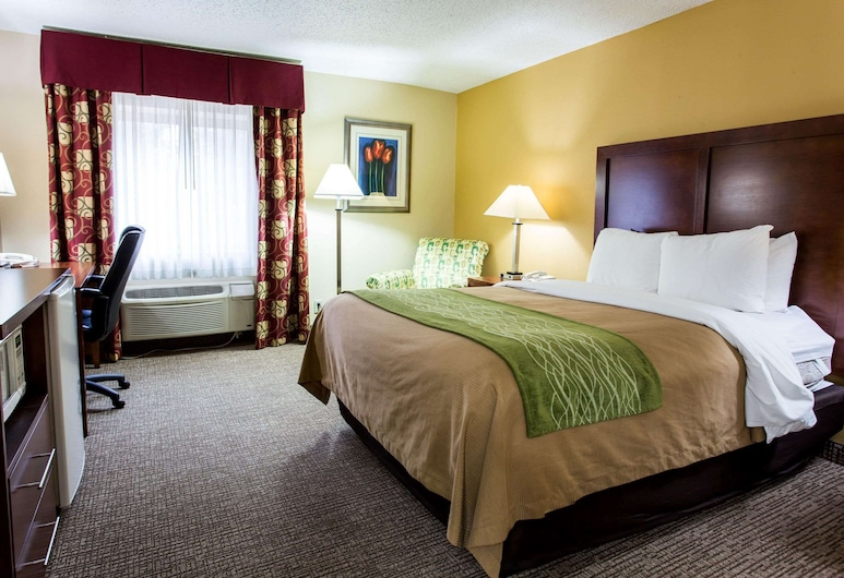 Comfort Inn Columbia, Columbia, Camera Standard, 1 letto king, non fumatori, Camera
