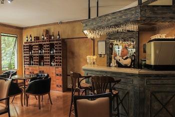 聖地牙哥萊昂納多達芬奇酒店的圖片
