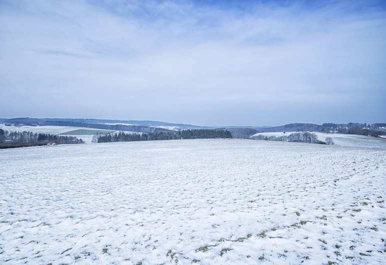 Romantik Hotel Alte Vogtei, Hamm (Sieg), Snježni i skijaški sportovi