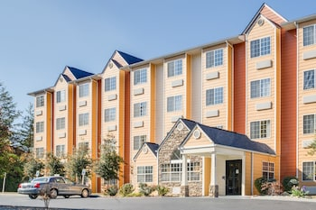 Top 10 Pet Friendly Hotels In Pigeon Forge Tennessee Hotels Com