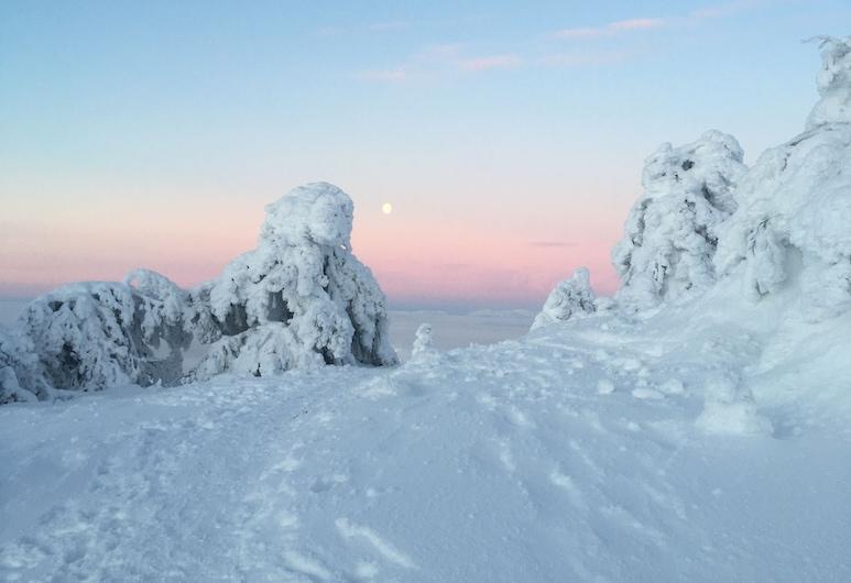 Levi Hotel Spa, Kittila, Snow and Ski Sports