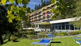 Book this Pet Friendly Hotel in Wengen
