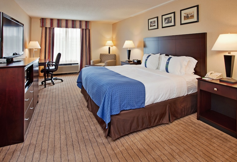 Holiday Inn Hotel & Suites Overland Park - Convention Center, Overland Park, Oda, 1 En Büyük (King) Boy Yatak, Sigara İçilmez (LEISURE), Oda
