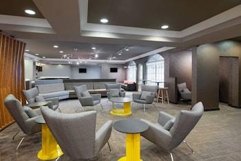 תמונה של Springhill Suites by Marriott Williamsburg בוויליאמסברג
