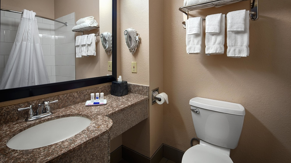 Book best western plus kalamazoo suites in kalamazoo hotels best western plus kalamazoo suites kalamazoo standard room 1 king bed with sofa reheart Choice Image