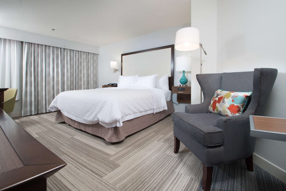 Room, 1 King Bed, Non Smoking (Shower Only) - Guest Room