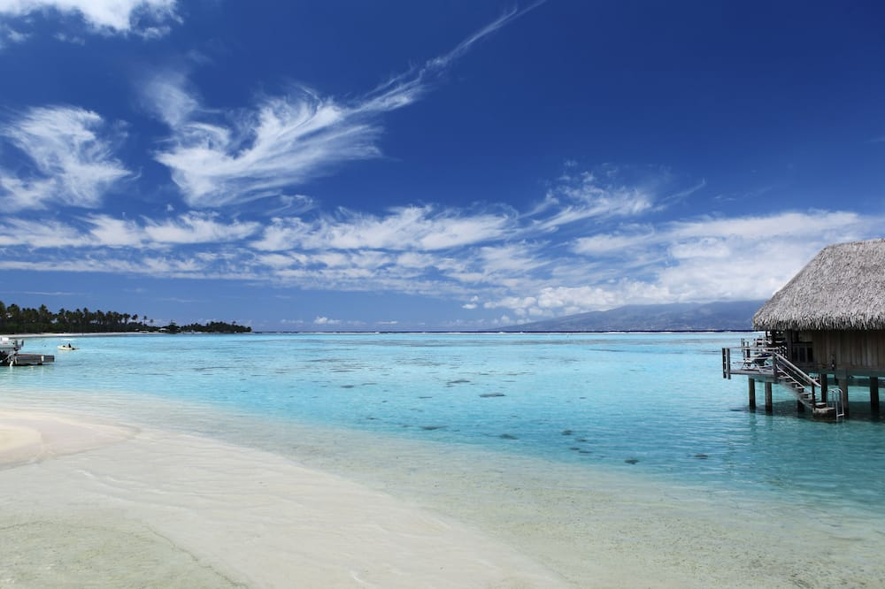 スーペリア バンガロー キングベッド 1 台 水上 - ビーチ