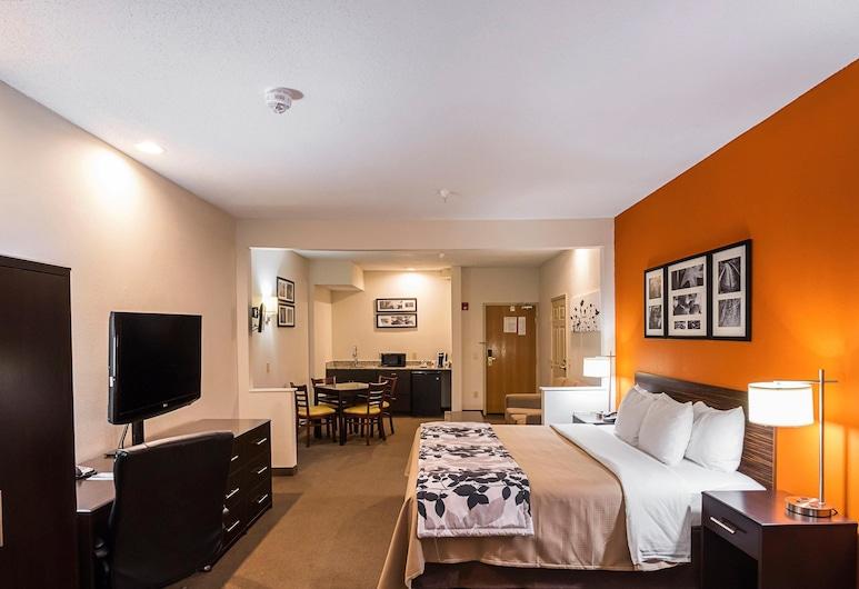 Sleep Inn And Suites Danville, Danville, Suite - 1 kingsize-seng med sovesofa - ikke-ryger, Værelse