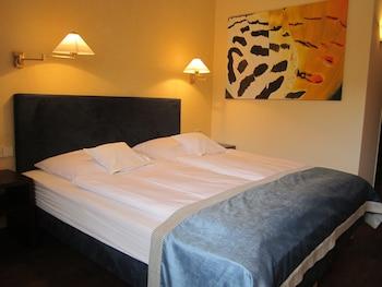 Freiburg im Breisgau bölgesindeki Central Hotel resmi