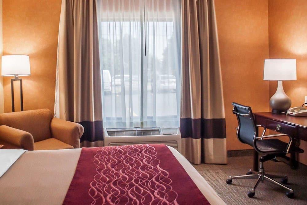 Standaard kamer, 1 kingsize bed, niet-roken - Kamer