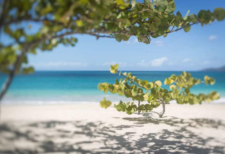 Spice Island Beach Resort, St. George's, Pantai
