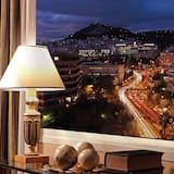 Apartmá typu Premier - Výhled z pokoje