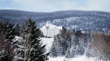 View this hotel and others in Quebec